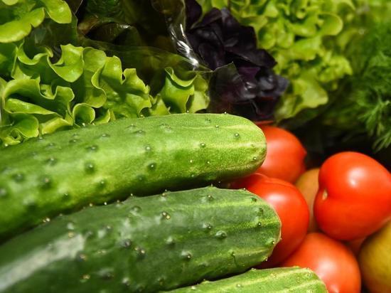 Овощехранилище в Вологодском районе позволит хранить дополнительно 2000 тонн овощей