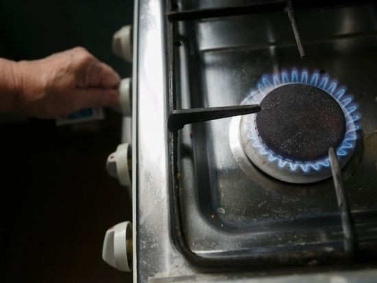 Общественники обсудили «газовые» проблемы за круглым столом