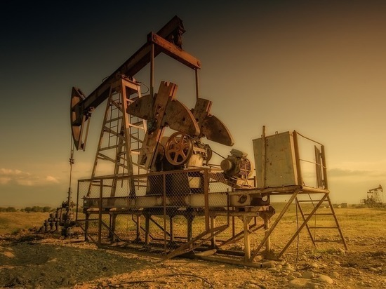 Малые компании Татарстана добыли нефти на 161 млрд руб. за 2018 год