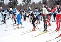 В Перми на «Лыжню России» зарегистрировалось почти 4 тысячи человек