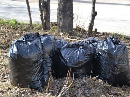 Орловцам объяснили, куда девать мусор, если нет контейнеров