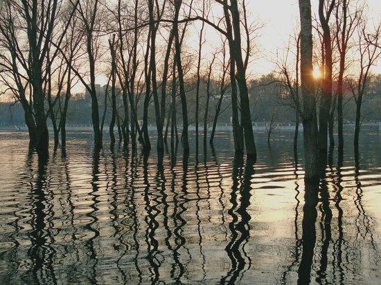 Где в Курске поставят переправы на случай паводка