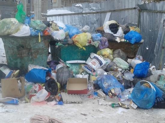 Из-за морозов Саянск утонул в мусоре
