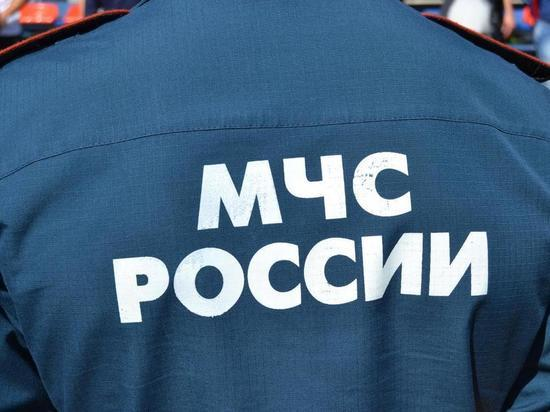 Путин назначил главу МЧС России по Крыму