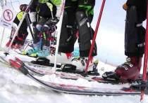 Нейтрализовать соперника на состязании при помощи лыжной палки решил девятилетний спортсмен из Москвы