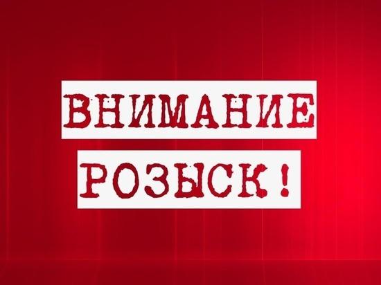 В Мордовии продолжают искать грибника Василия Князева