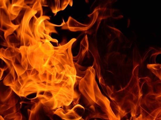 На пожаре в Спасске-Рязанском погибли два человека