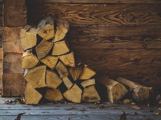 Бийский лесхоз раздает бесплатно дрова
