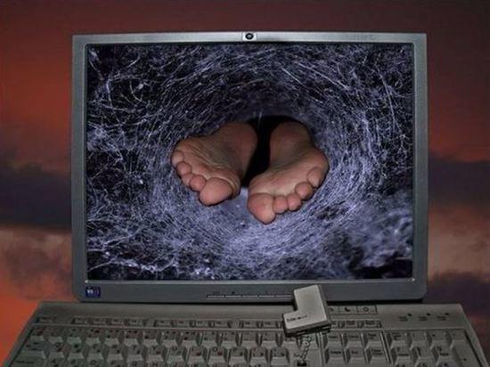 Теодором по кроне: В Калининграде лопнул очередной интернет-пузырь