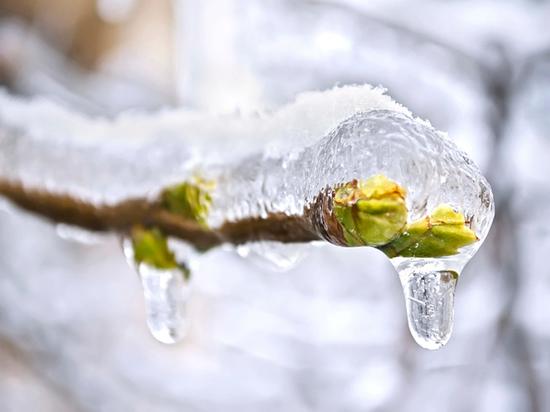 Воронежцев ожидают оттепель, снег и дождь на неделе