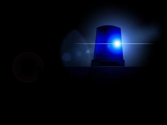 Полицейские обыскали алтайский райсовет после новогоднего скандала с дракой депутата Юрия Корнеева