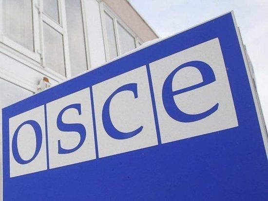 ОБСЕ пригласит россиян стать наблюдателями на украинских выборах