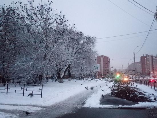 Завтра в Смоленской области по-прежнему пасмурно