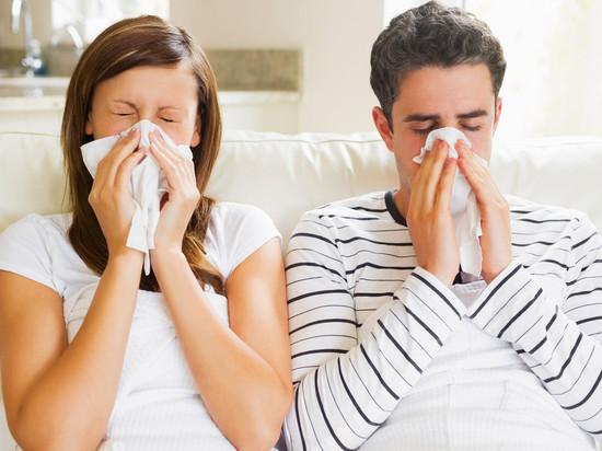 Роспотребнадзор Калмыкии открыл горячую линию по гриппу