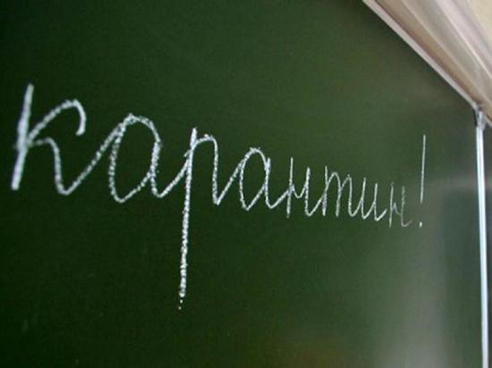На карантин по гриппу и ОРВИ в школах Липецка закрыты 28 классов