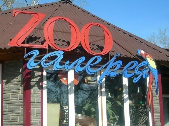 1 апреля для переезда закрывается Иркутская зоогалерея