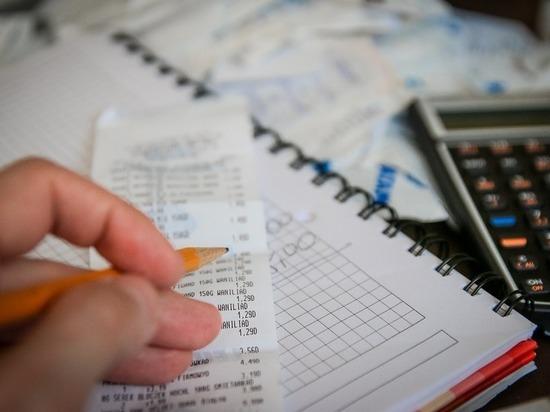 Директор одной из псковских фирм попытался уклонится от уплаты налогов почти на 10 млн рублей