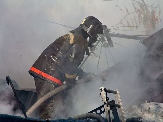 В Калининградской области горели сажа и бытовка