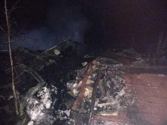 На пожаре в Мордовии погиб одинокий мужчина