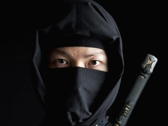 «Ниндзя» из Китая не проникли в Калининград