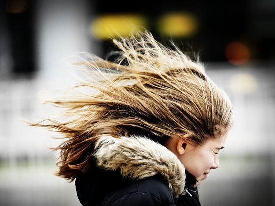 В Воронежской области ожидается сильный ветер