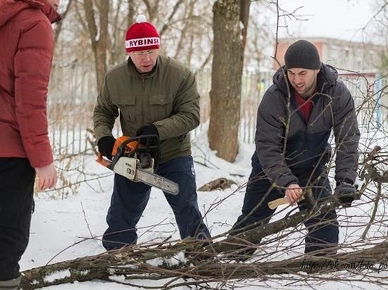 Партийцы помогли рыбинской школе избавиться от кустарников и аварийных деревьев