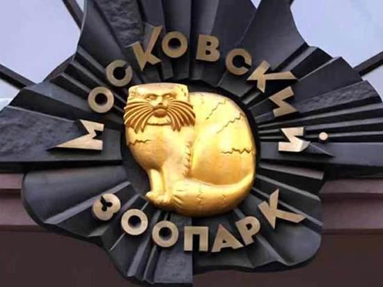 Главный символ зоопарка вернется на место после реконструкции
