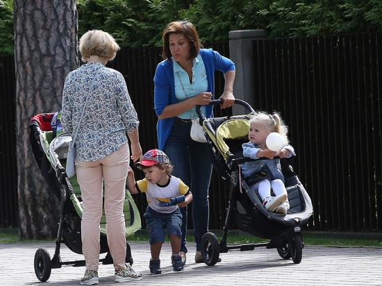 Статус многодетных семей решили узаконить в Совфеде