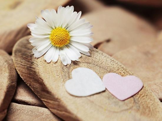 Ловушки для влюбленных: как мошенники обирают ищущих вторую половину