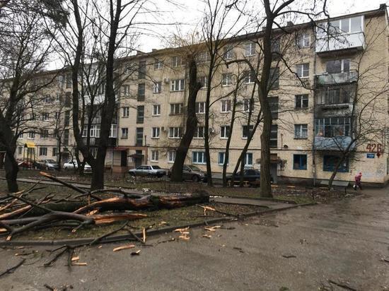 Режим ЧС ввели в Ставрополе из-за ураганного ветра