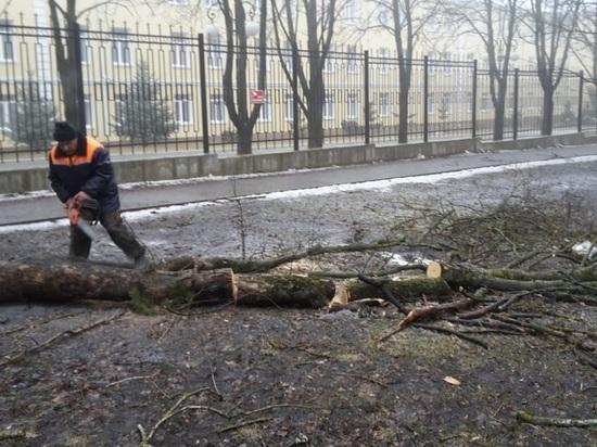 В Ставрополе на смену ураганному ветру ударят морозы
