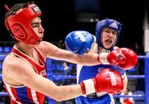 Свердловские юноши-боксеры показали впечатляющий результат на Первенстве по УрФО