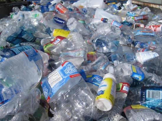 Мотивация и маркировка: в Твери рассказали, как правильно выбрасывать пластик