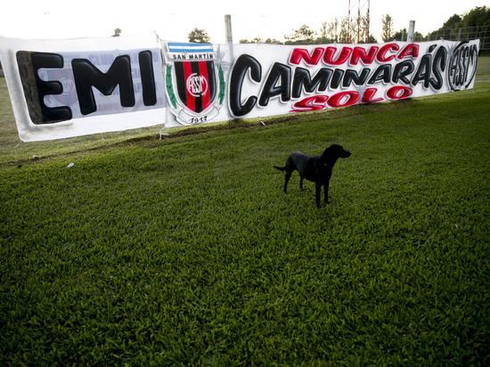 Собака погибшего Эмилиано Салы попрощалась с хозяином на похоронах