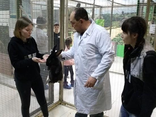 """Ульяновские ветеринары проверили здоровье питомцев """"Планеты обезьян"""""""