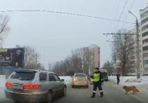 Челябинский полицейский стал символом российской доброты
