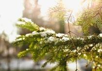 В День защитника Отечества 23 февраля погода побалует москвичей голубым небом, солнцем и легким зимним морозом