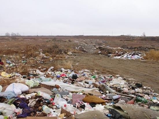 Власти Яшалтинского района Калмыкии образовали свалку