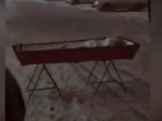 Россиянка привезла к зданию правительства открытый гроб с телом мужа