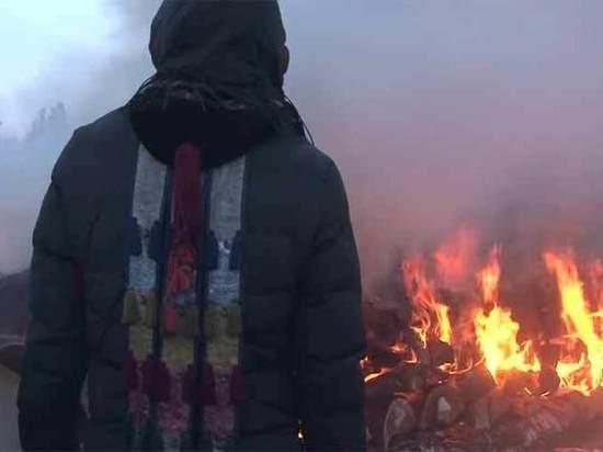 Сожжение пяти верблюдов «ради России» прокомментировали Невзоров и Запашный