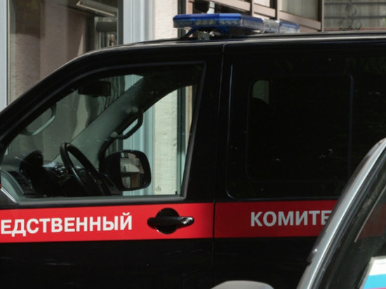 За гибель трёхлетней девочки из Кирова ответят должностные лица