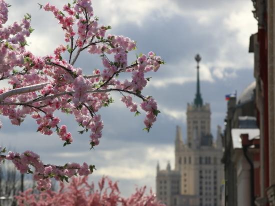 Синоптики: наступления весны можно ожидать не ранее второй половины марта