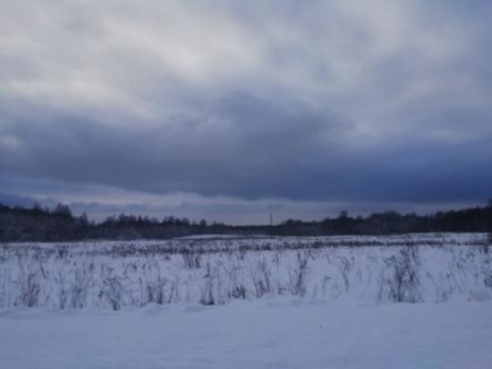 Сегодня в Смоленской области до плюс четырех, ветрено