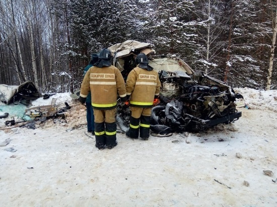 В Рязанской области за выходные произошло 119 аварий