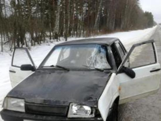 Под Рославлем нарушивший ПДД водитель стал причиной гибели пешехода
