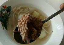 Надзорные органы Курганской области выясняют причины попадания в суп странного продукта