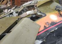 Вдова погибшего в результате крушения самолета в Подмосковье пилота-инструктора Игоря Козлова рассказала, что в день трагедии ничего тревожного в состоянии мужа не заметила
