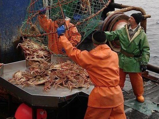 В Мурманской областной думе обсудили крабово-рыбные аукционы