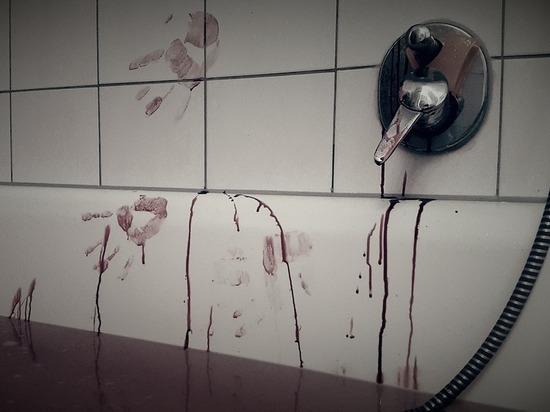 В квартире московского убийцы жены и сына обнаружили кровавые надписи