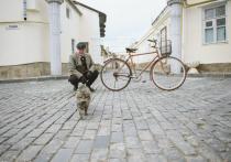Актер Сергей Новиков рассказал о своих секретах и тайнах Евпатории